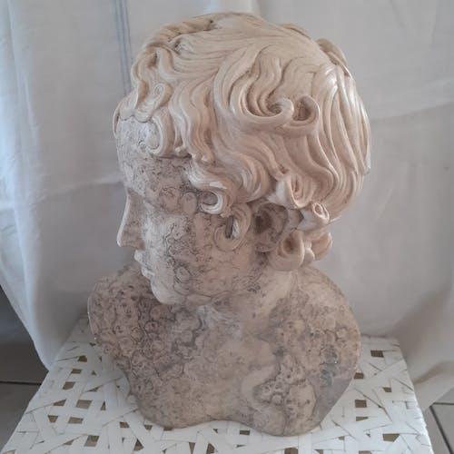 Buste en plâtre David années 70
