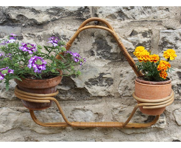 Rattan wall plant holders