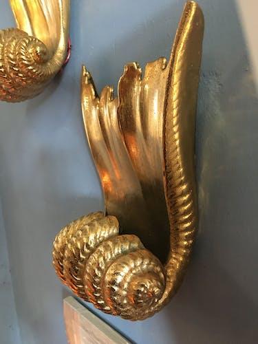 Paire d'appliques coquillage
