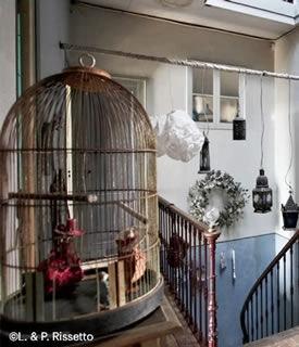 > SHOP A BIRD CAGE