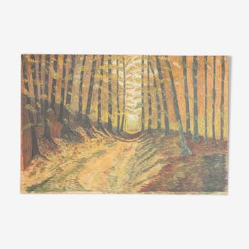 Painting oil forest trail