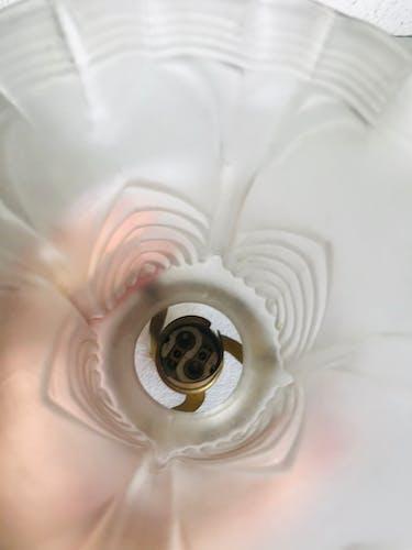 Tulipes art deco en verre dépoli