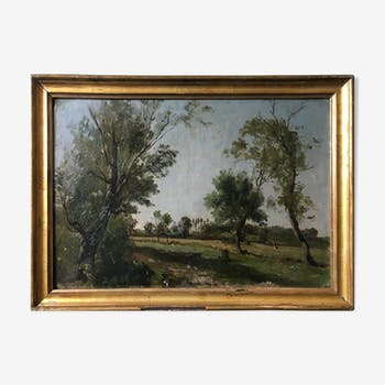 """Animated Country Landscape"" full 19th century to restore"