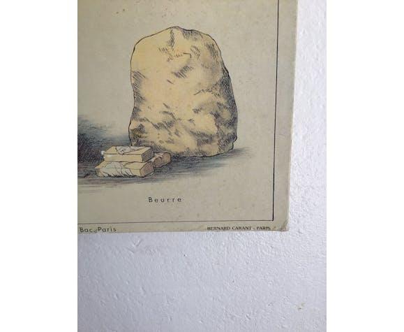 Educational school poster on milk