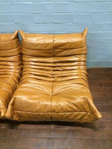 """Togo"" sofa set in leather by Michel Ducaroy for Ligne Roset"