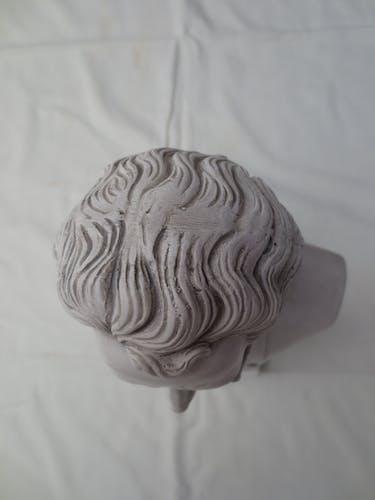 Schubert bust