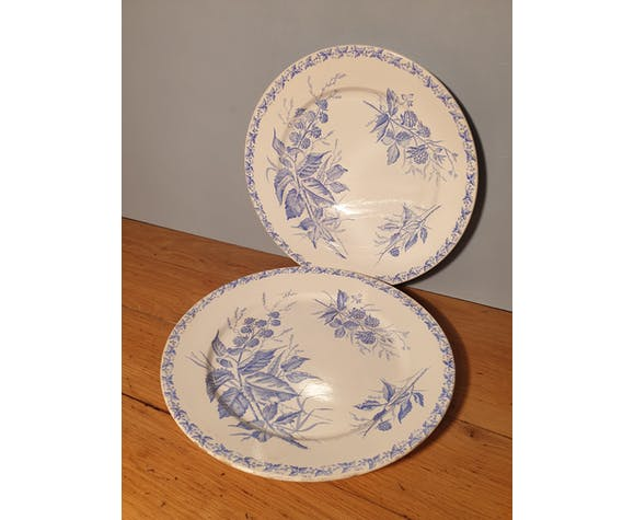 Duo assiettes plates Badonvillers