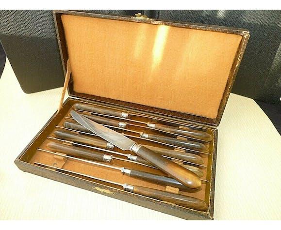 Coffret de 12 jolis couteaux de table Apollonox Corne Bovine et Inox