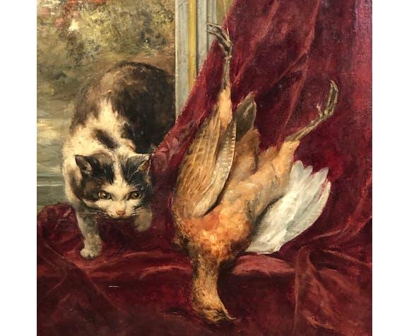 Chat sur le rebord de la fenêtre