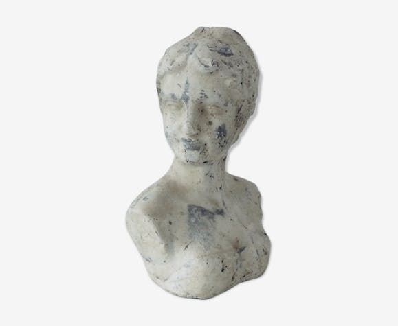 Stone and plaster bust