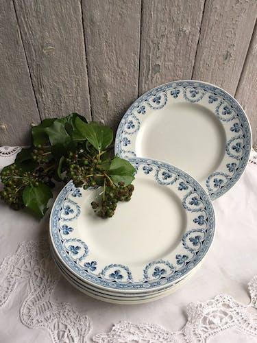Lot de 6 assiettes plates Saint Amand et Hamage - Terre de Fer