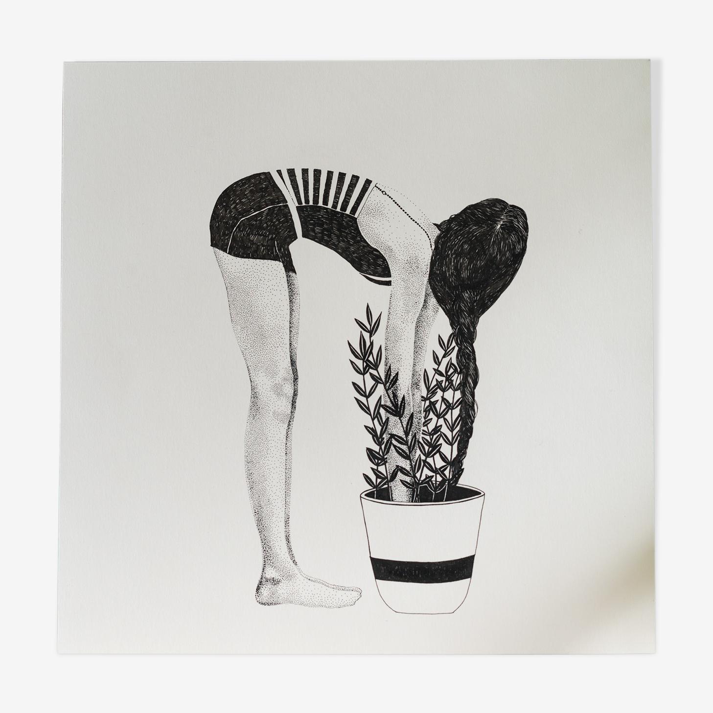 Illustration - Belle plante