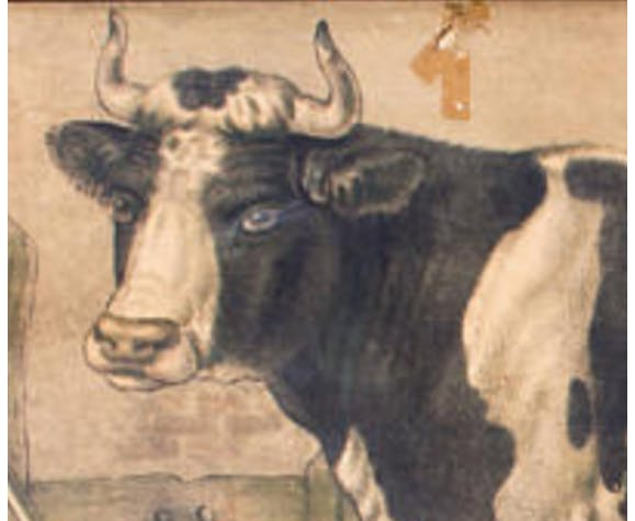 """Poster """"Cow"""" educational grid 1891"""