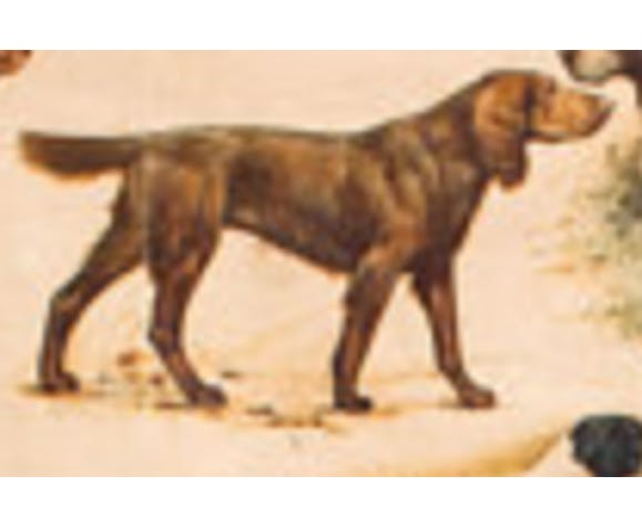 """Poster """"Breed of dogs"""" 1952"""