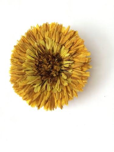 Juju hat jaune 50 cm
