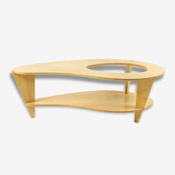 Design coffee table organic form