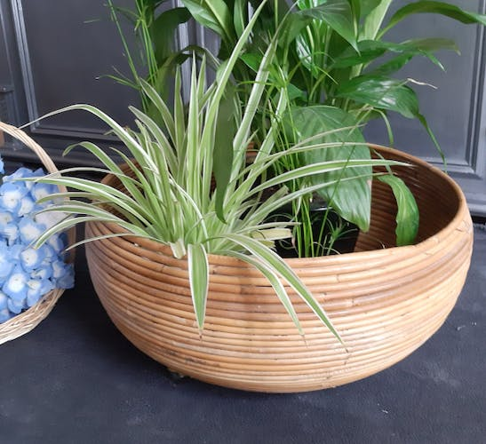 Hide pots or plant holders