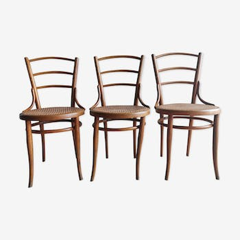 Set of 3 authentic Thonet chairs early 20th century