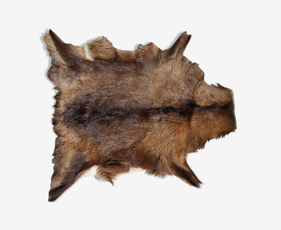 Peau de chèvre 57x74cm
