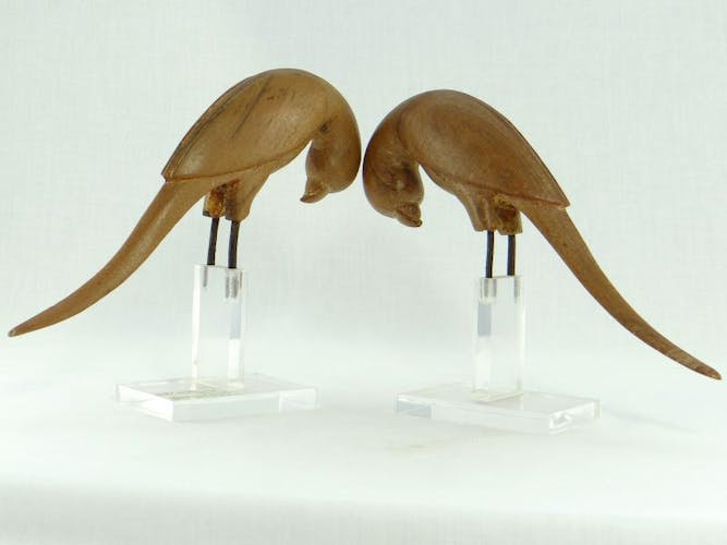Pair of parakeets in carved wood bookends, 19th century