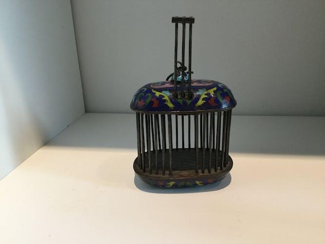Cage à criquets