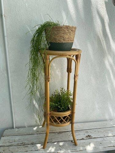 Rattan plant holder