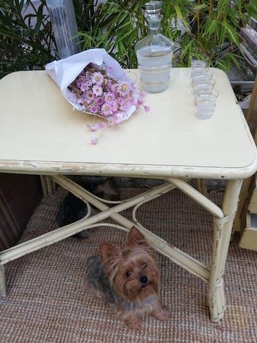 Table en rotin 1960