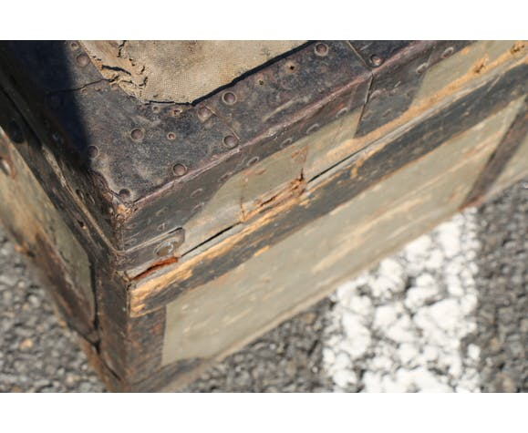 Old trunk 655mm
