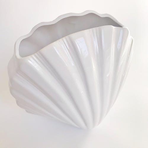 Vase coquillage géant