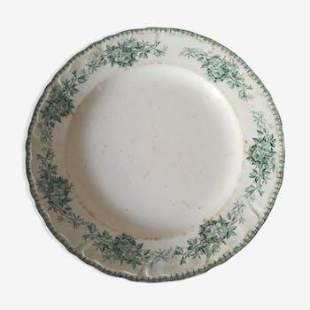 Iron earth dish
