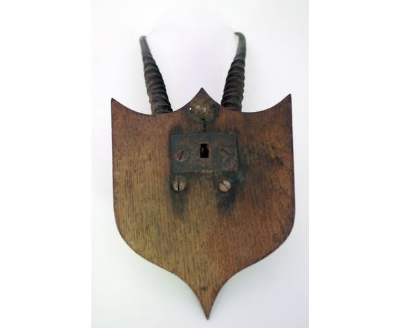 African hunting trophy
