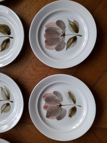 Ensemble de 10 assiettes Saint Amand modèle Capri