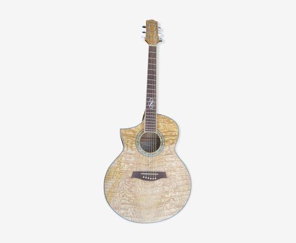Guitare electro acoustique ibanez