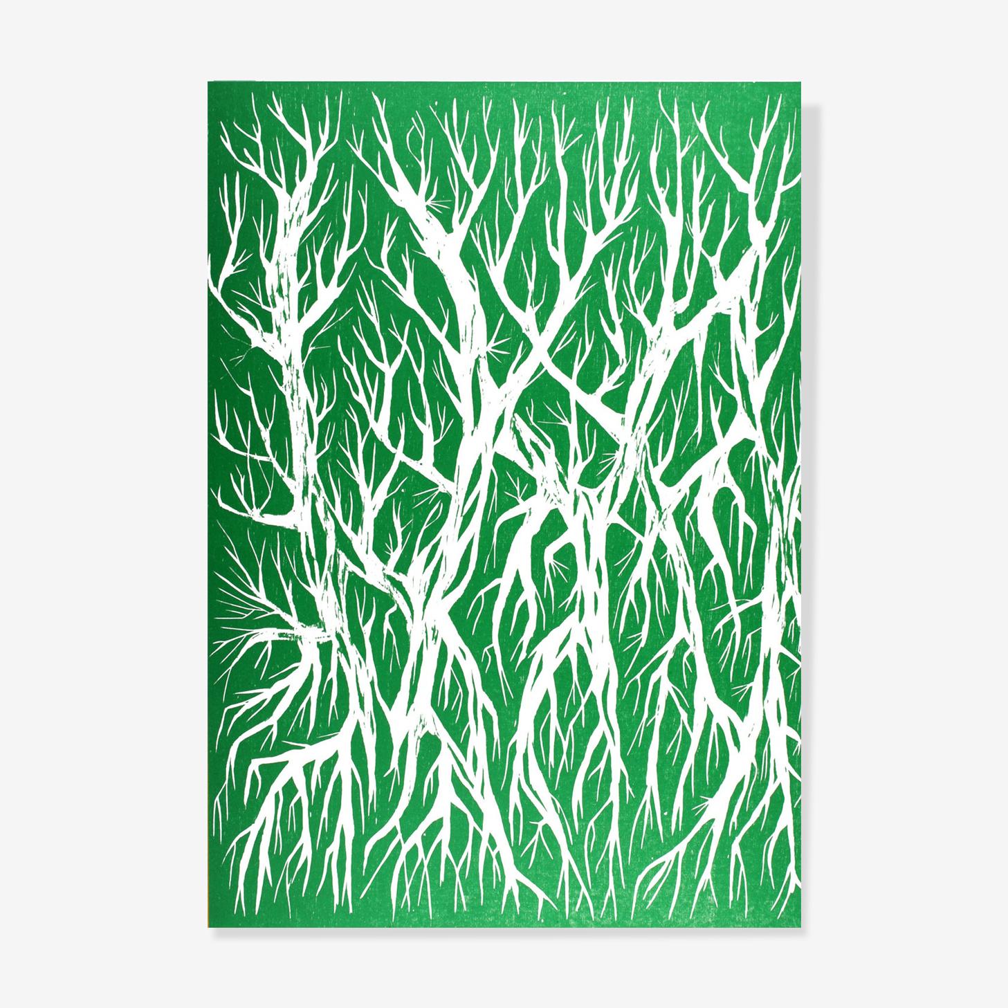 Racine vert