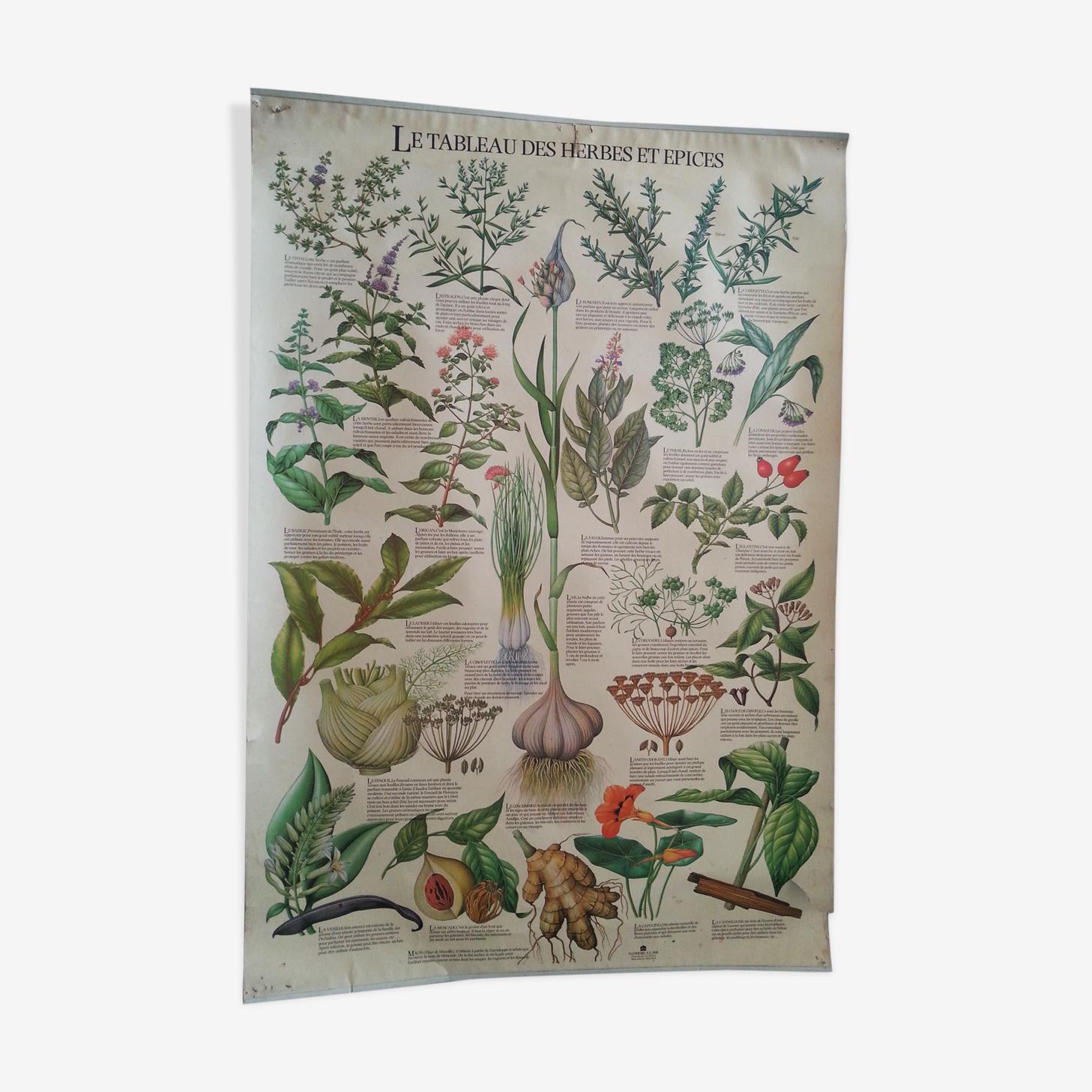 1978 botanical vintage poster
