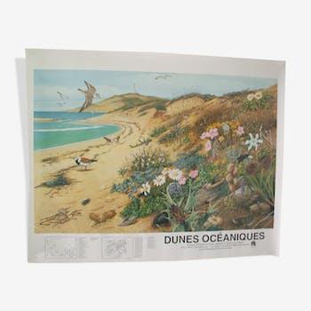 """Affiche """"Dunes océaniques"""" éditée par la """"Frapna"""""""