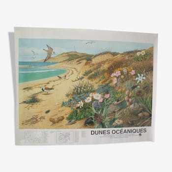 """Ocean Dunes"" poster published by the ""Frapna"""