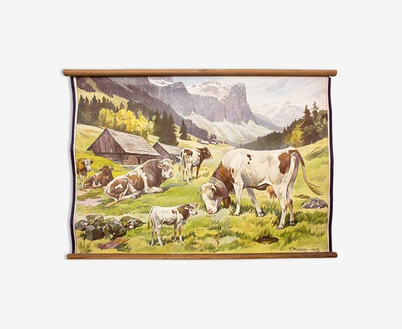 "Poster ""Cows"" educational rack Franz Roubal 1925"