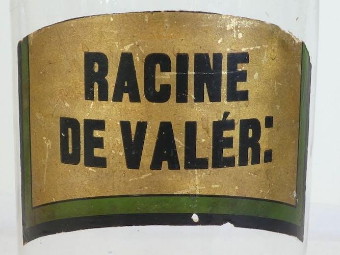 Ancien pot a pharmacie racine de valer