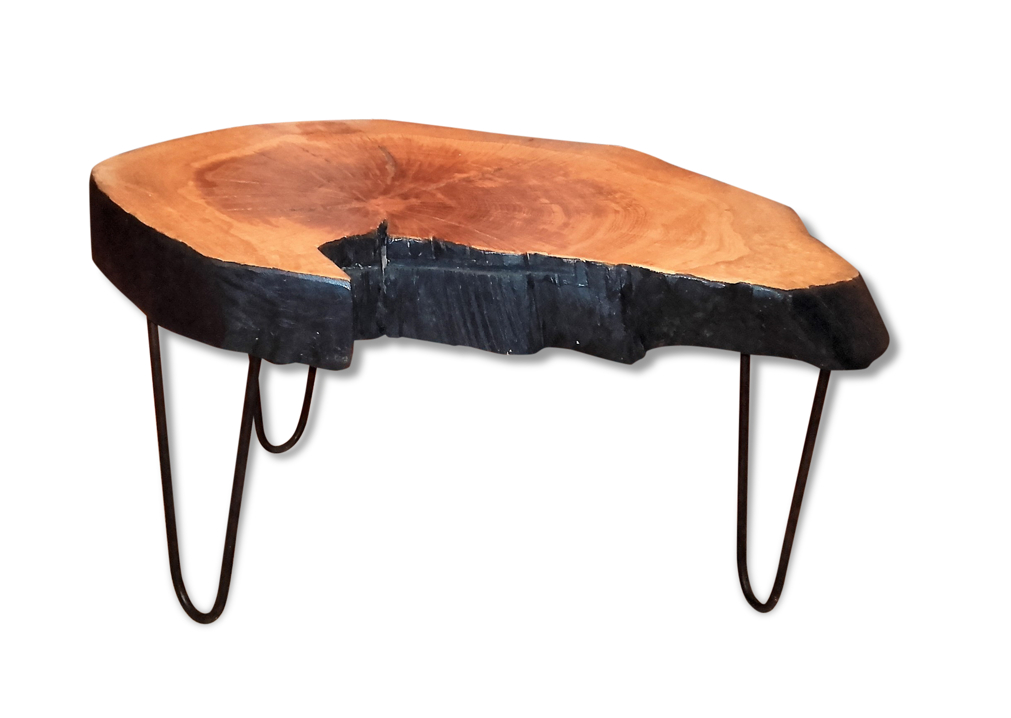Table basse tronc d arbre fashion designs for Table plateau tronc d arbre