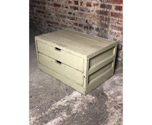 Storage / coffee table in wood and pastel green iron patina