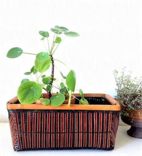 Jardiniere bambou et rotin