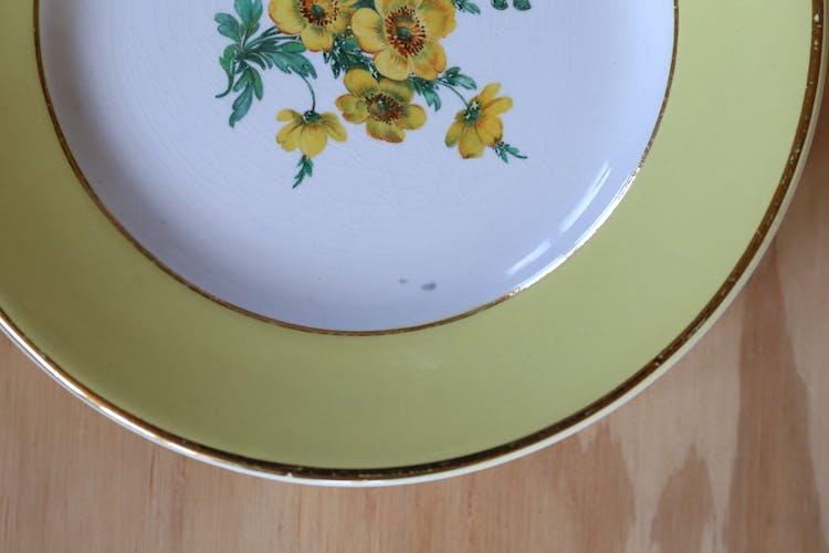 6 assiettes anciennes Digoin & Sarreguemines