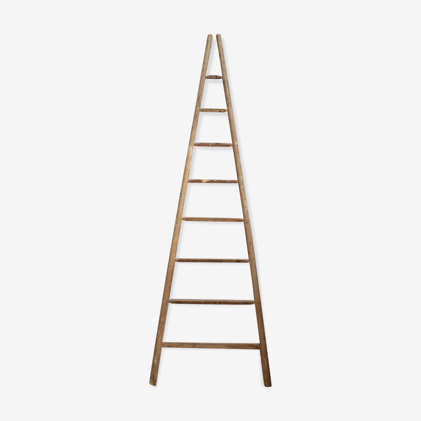 Ancienne échelle en bois