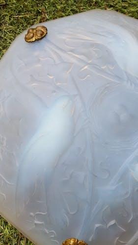 Suspension aux oiseaux en verre opalescent