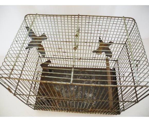 Cage à oiseaux en fer
