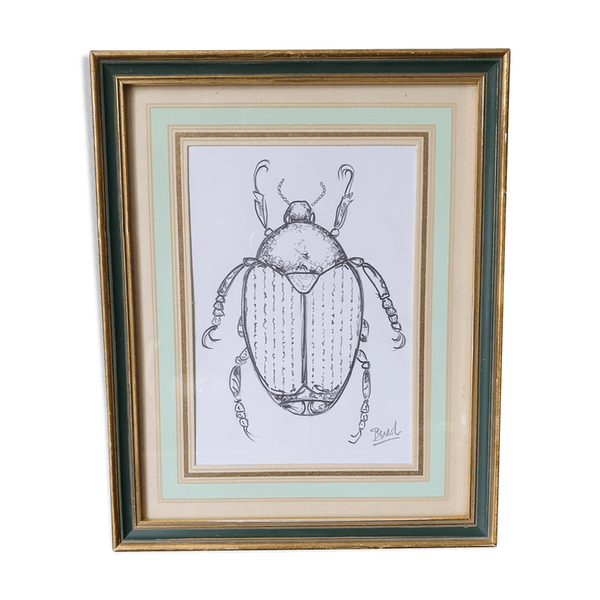 Framed Insect Sketch Selency