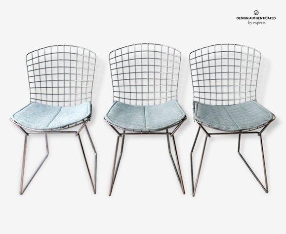 Chaise Bertoïa édition Knoll Avec Coussin Dorigine Metal Design