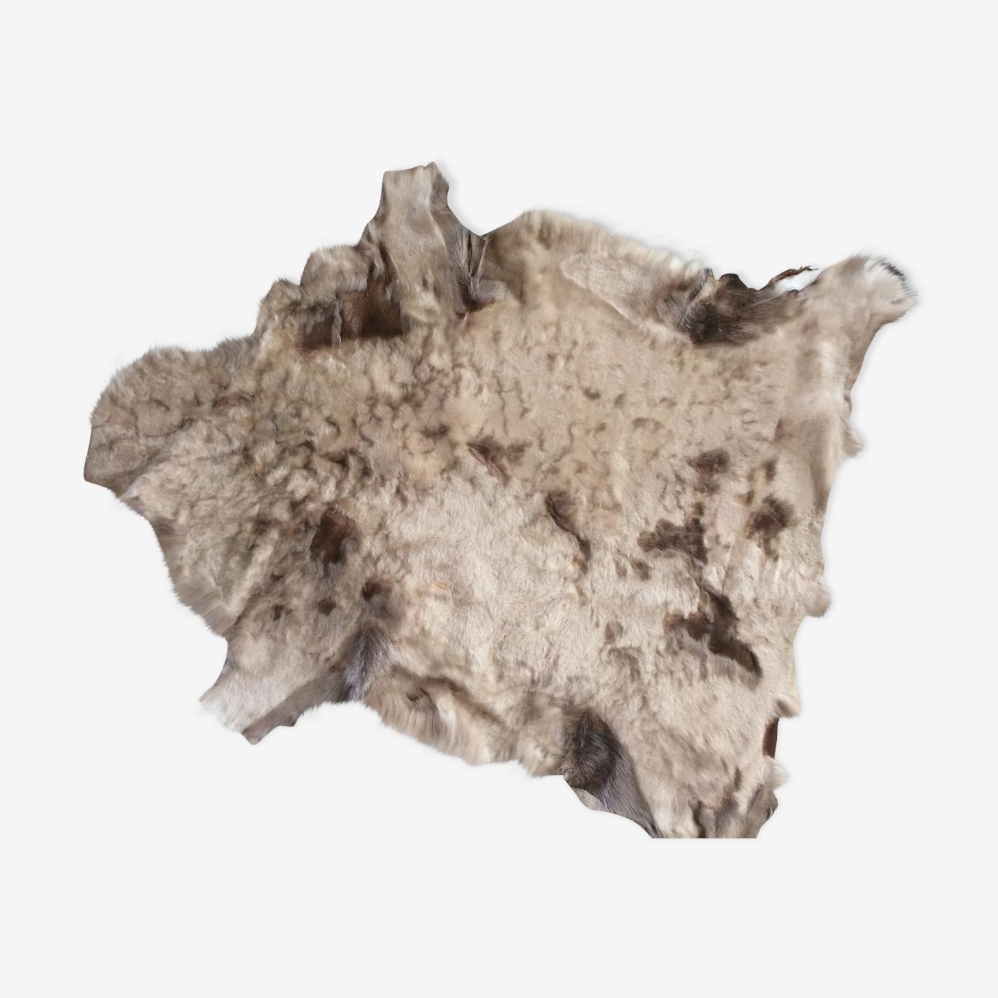Peau de chèvre de couleurs claires: beige et marron.
