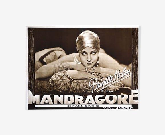 Affiche Mandragore